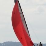 SUI 226-02